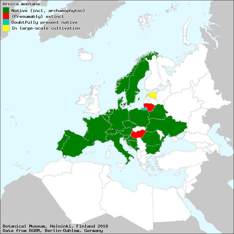 Arnica Montana Wikipedia - Where does wolfsbane grow in the us map